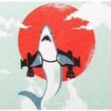南海大鲨鱼